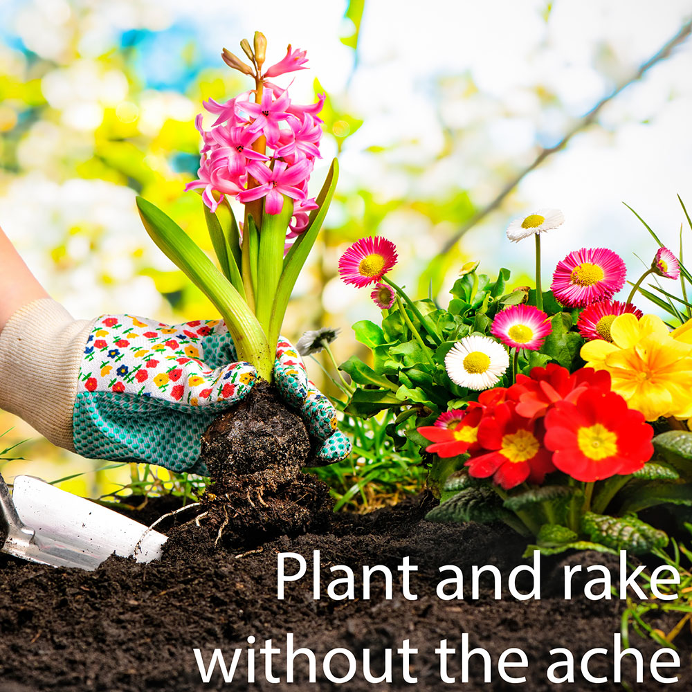 Plant and rake without the ache